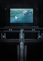 Art_Cinema_1