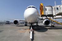 JAL_Dreamliner_3