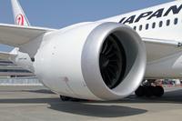 JAL_Dreamliner_6