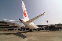 JAL_Dreamliner_12