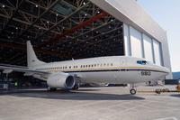 Boeing_737_5000_1