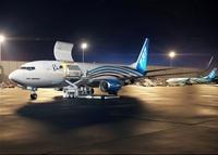 737BCF_CargoLoadingNight