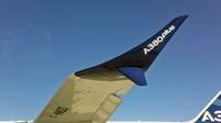 A380p_winglet
