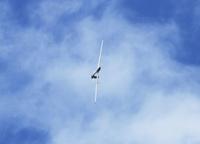 SM_glider