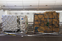cabin-cargo-flexibility-