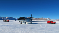 Antarctica_Falcon