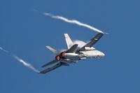 Ilmavoimien Hornet